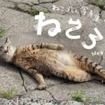 寝転び猫の写真だけ、集めに集めた写真集。クラウドファンディングにて出版記念個展の支援を募集
