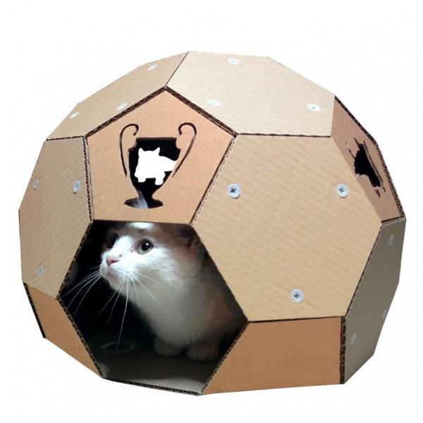 150530soccer 600x600 - 頭に戴く優勝カップ、サッカーボールの猫ハウス