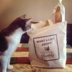 買うほどに猫が助かるエコバッグ、荷物運びも猫遊びにも