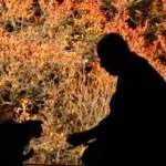 ドウダンツツジの赤を背に、仲良くたたずむ猫と和尚
