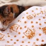 保護猫助かる猫ジャーナルの注染手ぬぐい、ネコリパブリック各店で限定販売