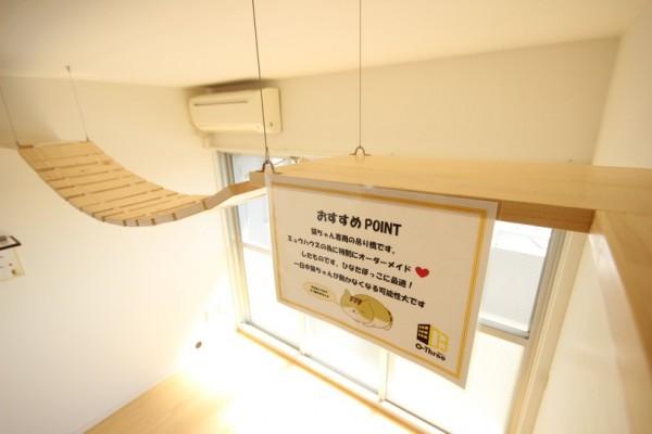 160328myuhouse05 600x400 - 猫が主役のマンション誕生、1棟丸ごと猫用フルリノベーション