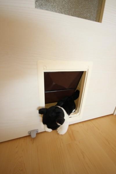 猫用のドアも完備。