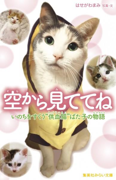 DonorCatBatako_cover_160215.indd