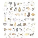 探すはうちの猫の顔、吉祥寺「うちの猫博」開催中