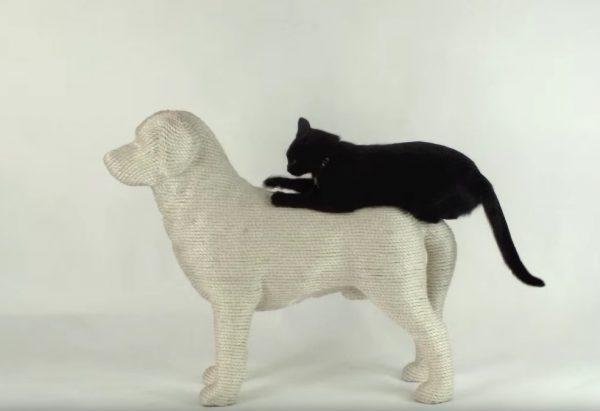 160610dogandcat 600x411 - 犬型の猫の爪とぎ大人気、擦りつけ爪とぎ上に乗り
