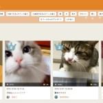 猫の10秒動画アプリ、かわいい動きにリピート必至