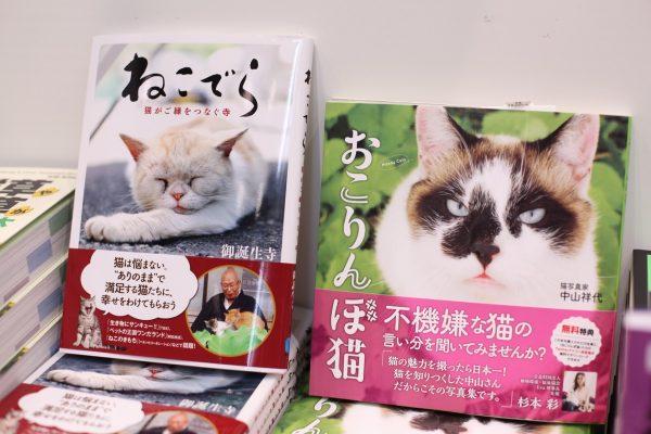 160924bookfair07 600x400 - 週末の猫本探しに有明へ。東京国際ブックフェアが25日まで開催