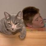 センター英語に猫が登場、内容よく見りゃ「猫の名は」