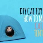 ハンガーと古Tシャツと段ボール、合わせて作るDIYの猫テント