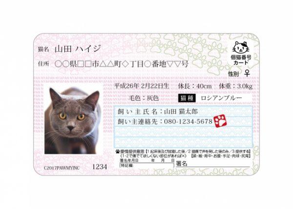 170221mynumbercat 600x429 - 2017年も2/22は猫の日祭り!各所の猫祭りまとめ【追記あり】