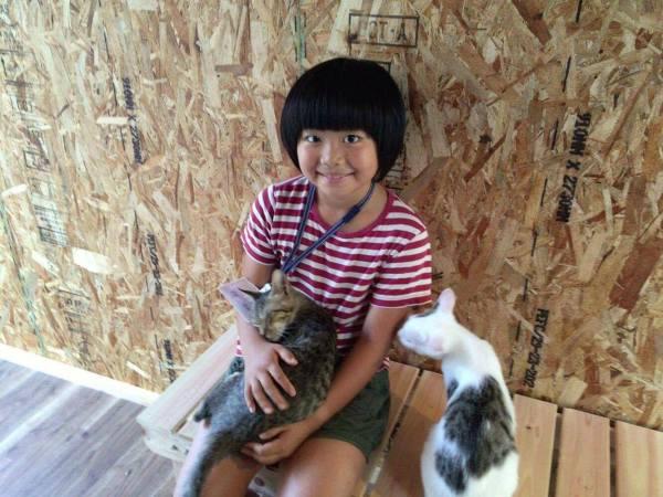 "170422catshelter01 600x450 - 「旅館で猫保護」第2ステージ、猫庭""拡張""プロジェクト"