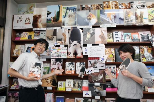 170828nobicat01 600x400 - のび猫写真が書店に集結、神保町にて9月8日までパネル展が開催