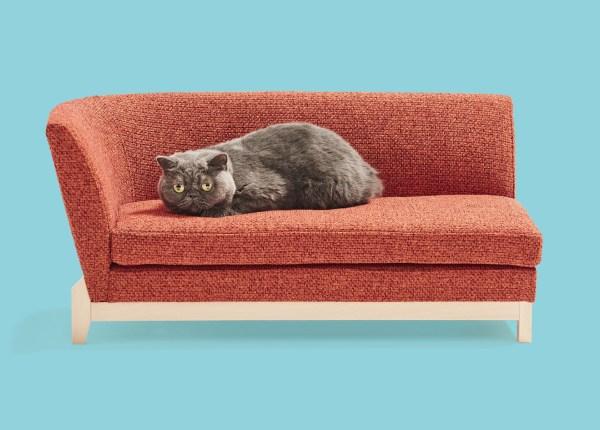 180924nekokagu04 1920 600x430 - 猫用サイズの職人MADE、あのネコ家具がふるさと納税の返礼品に