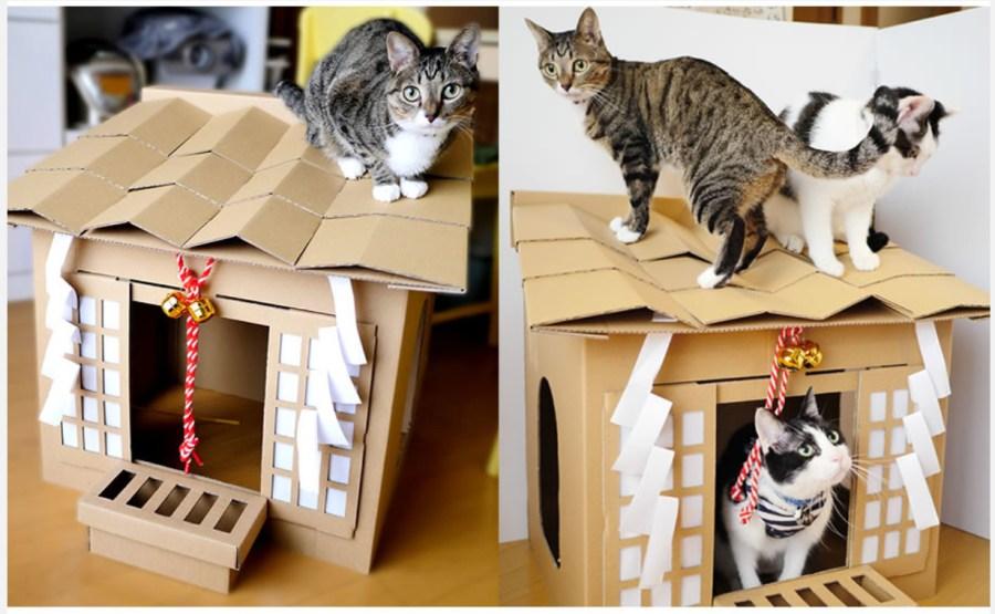 来年の初詣先は猫神様、猫助けにもなる段ボール製猫神社