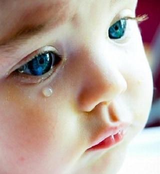 ミニトラちゃんと一番小さい子、だめだった。ち子ちゃんは気付いてないのか、ずっとそのままにしてる。悲しくて切ない。命が潰えた子どもたちの話題は、この投稿でおわりにしますね。 #こねこ部 #こねこ #kitty #ねこ部 #ニャンスタグラム #にゃんすたぐらむ #ねこ #ネコ #ネコ部  #ネコ好き  #ネコスタグラム  #ネコのいる生活 #にゃんこ #しまねこ #黒猫 #cat #catstagram #petstagram #instacat #meow #catoftheday #ilovemycat #catlove #고양이 #고냥이 #냥이