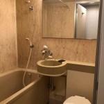 お風呂・洗面台・トイレは一体式です。大きな鏡があります