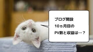 ブログ運営10ヵ月目のPV数とアフィリエイト収益を公開