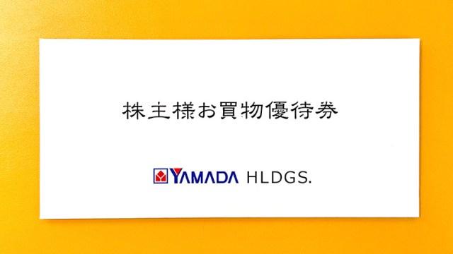 ヤマダホールディングス(9831)の株主優待が到着【2021年】