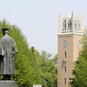 ニャンとびっくり!早稲田大学は猫の楽園であった。