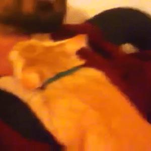 【首フェチ】飼い主さんの首に一生懸命吸いつく猫ちゃん!?「チュウチュウ♡」