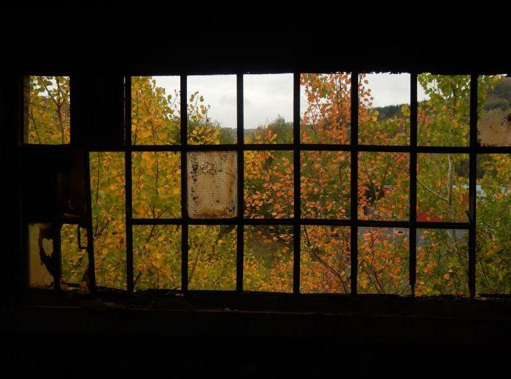 Fenster Mölleranlage
