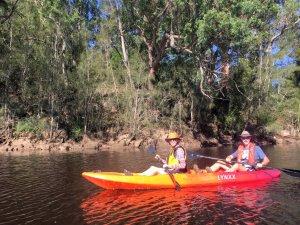 Exploring Nelligen Creek