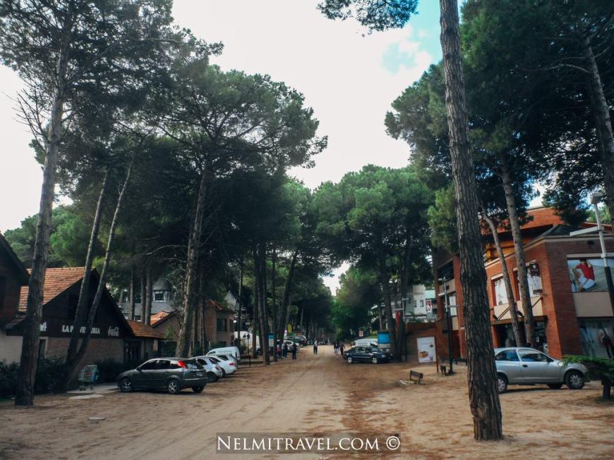 Cariló; Carilo; Nelmitravel; Coast Argentina; What to do in Carilo; Cariló Argentina;