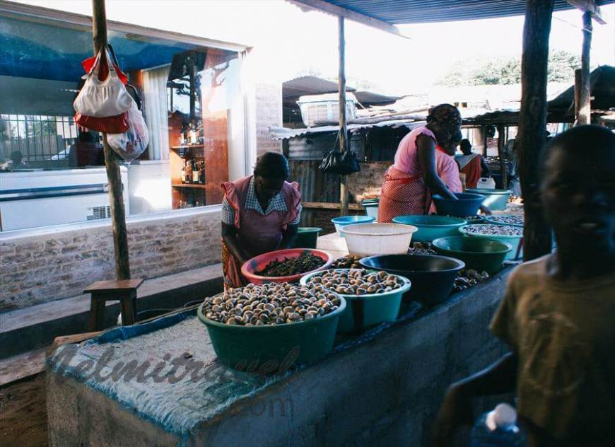 The fish market in Maputo, Mozambique