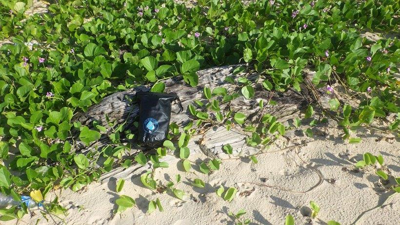 Greenery in Nacpan Beach