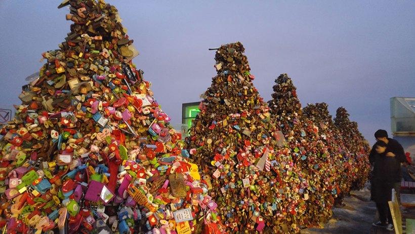 Love locks as Christmas trees at N Seoul Tower