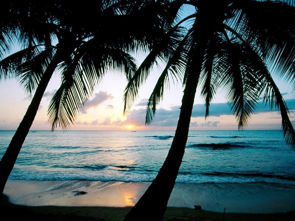 Nelson_Carvalheiro_Barbados (9)