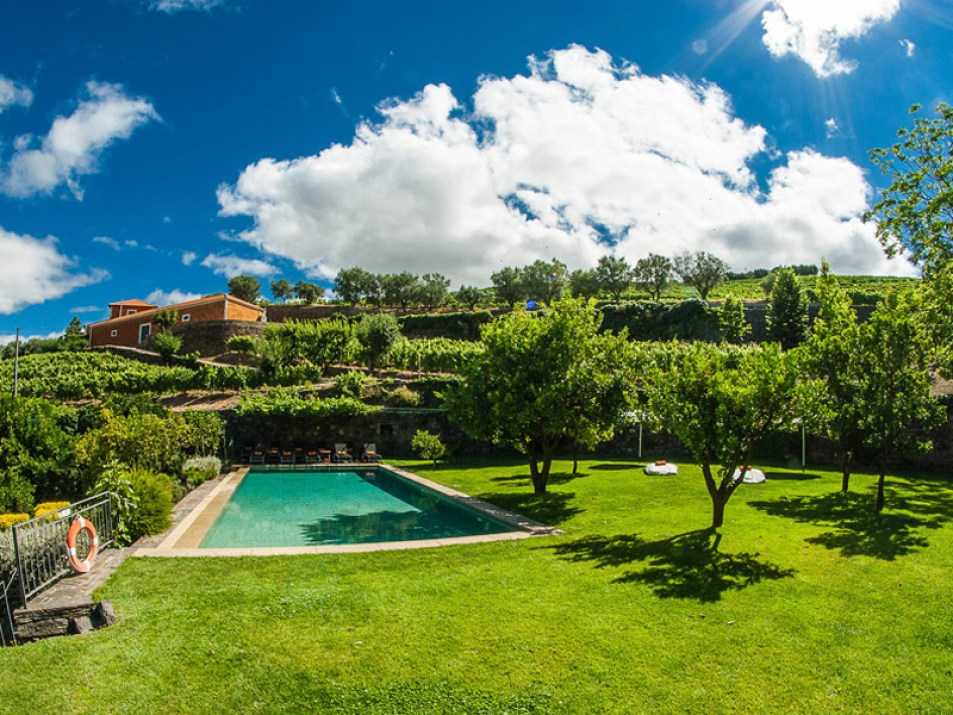 9-Quinta-do-Vallado-Peso-da-Regua-Douro-Portugal-Nature-House-Swimming-Pool