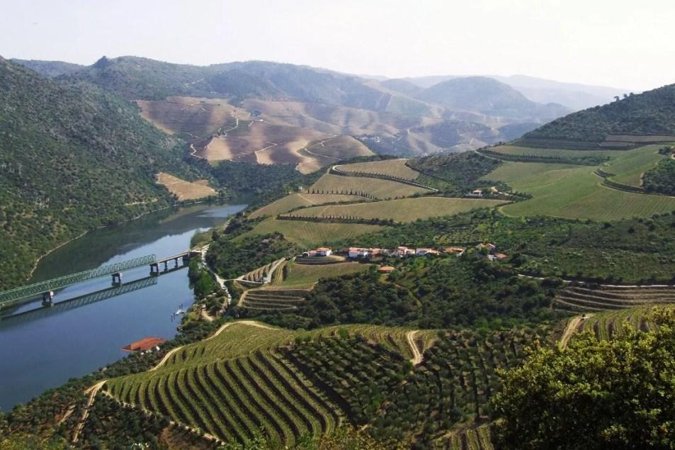 Nelson_Carvalheiro_Douro_Valley (29)