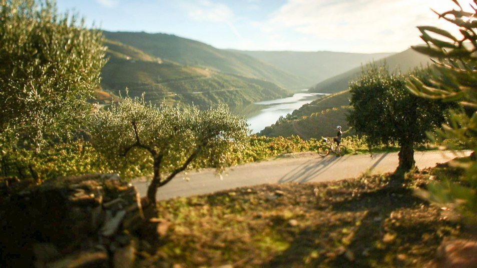 NelsonCarvalheiro Portugal Bicycle Tours (2)