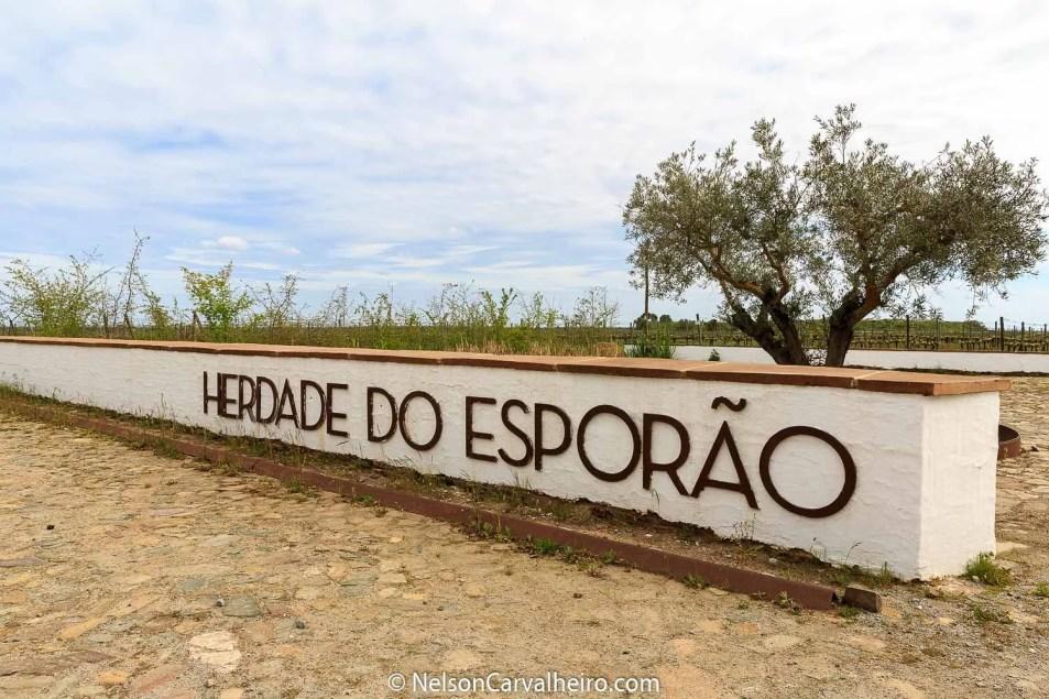 Nelson_Carvalheiro_Alentejo_Wine_Travel_Guide_Herdade_Esporão