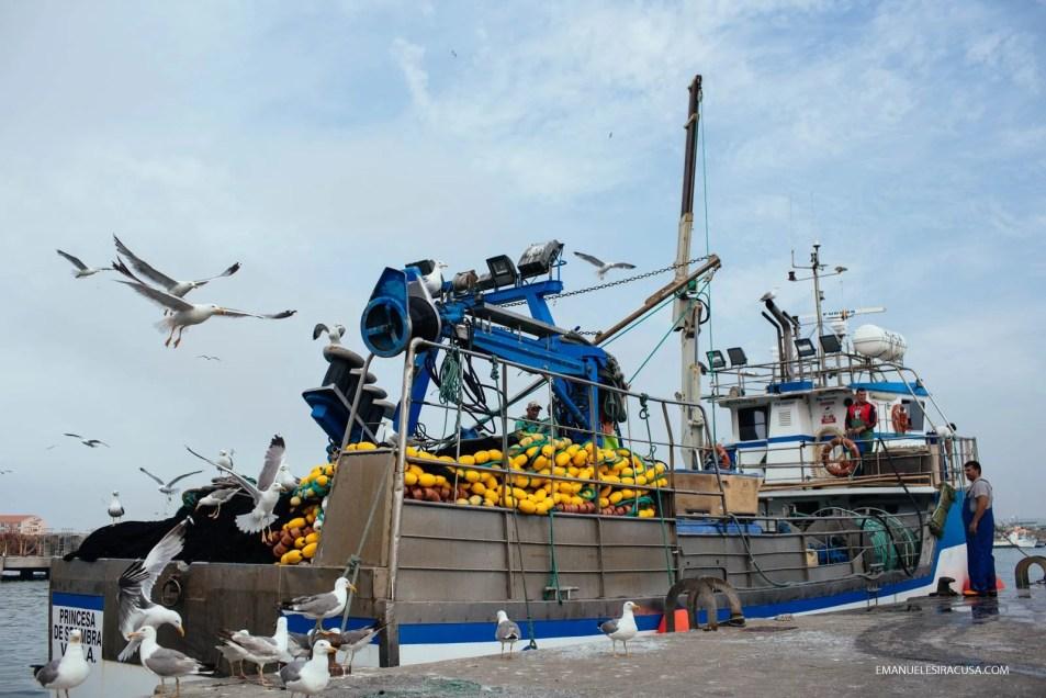 Emanuele Siracusa - Centro de Portugal - Oeste - Peniche Fishing Port-29