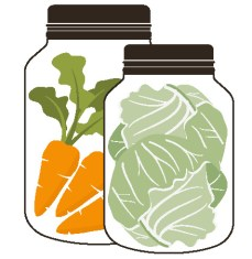Carrots and cabbage fermenting in glass jars.