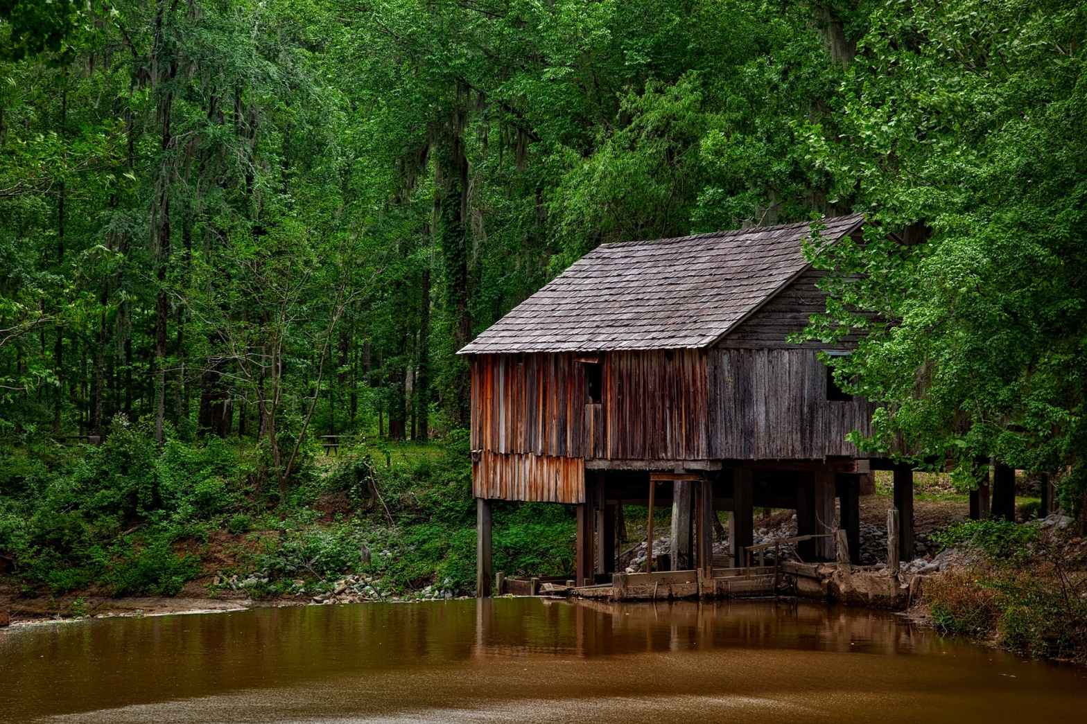 brown wooden shed surrounded by trees