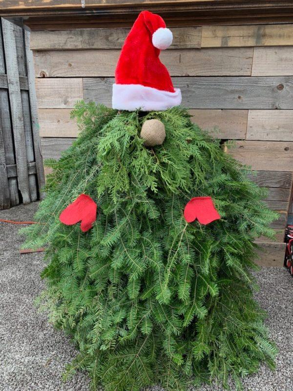 Evergreen Gnome