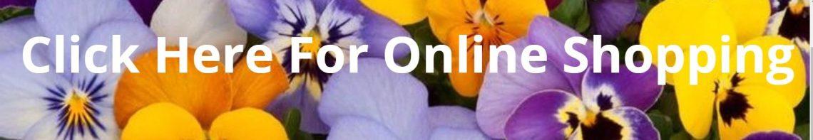 Nelson Nursery Shop Online