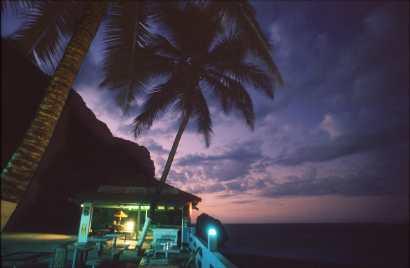Puerto rico, palmeras, árbol, noche