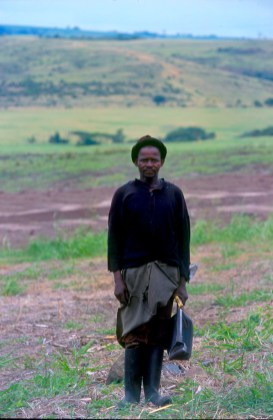 Sudáfrica, Natal Kwa-Zulu, Empangeni, trabajador de la caña de azúcar, retrato