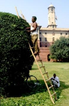 India, Uttar Pradesh, Delhi, edificio presidencial, Jardineros
