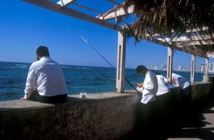 Israel, Yafo (Jaffa), Puerto, pescadores