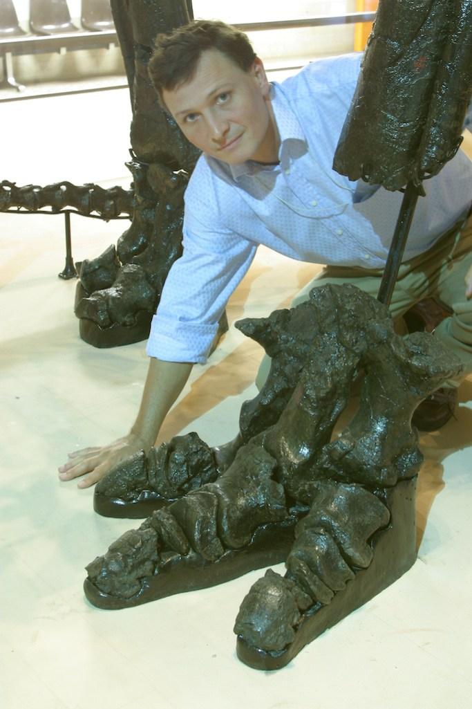 Bélgica, Bruselas, Parque Leopoldo, Museo Ciencias Naturales, Fósil de Iguanodontes, retrato