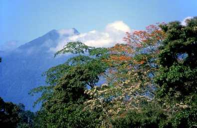 Costa Rica, Meseta Central