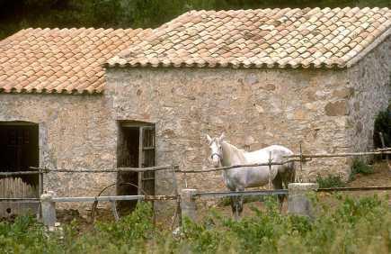 España, Menorca