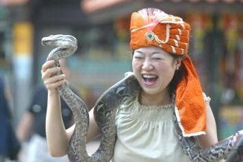 Singapur, Isla Santosa, posar con una piton, animal retrato