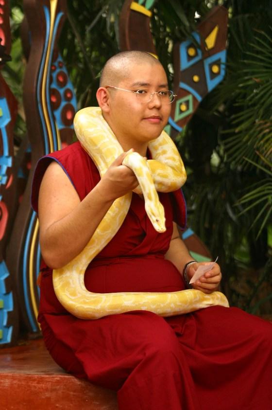 Singapur, Zoológico, Foto con reptil, retrato, animal